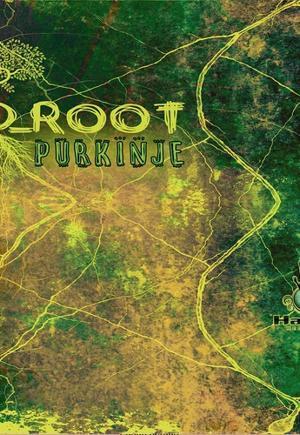 D Root