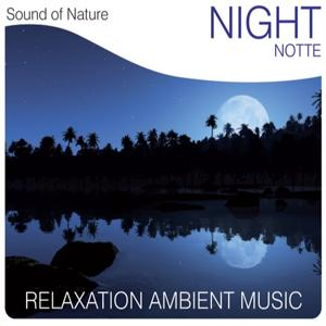 Night (Notte) (Relaxation Ambient Music)