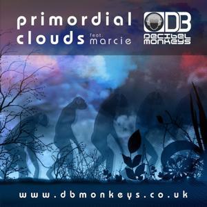 Primordial Clouds