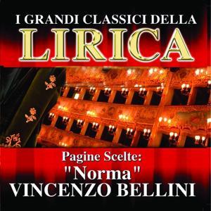 Vincenzo Bellini : Norma, Pagine scelte (I grandi classici della Lirica)