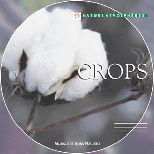 Nature Atmosphere: Crops