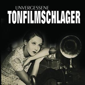 Wunderschöne Tonfilmschlager, Vol. 7