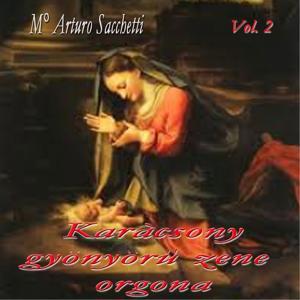 Karàcsony: gyönyöru zene orgona , vol. 2