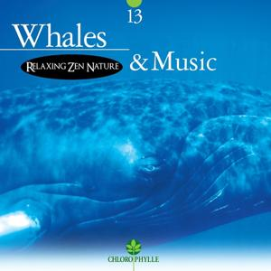 Chlorophylle 13: Whales & Music