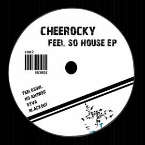 Feel So House
