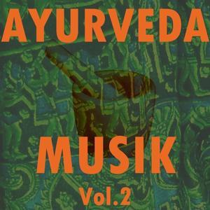 Ayurveda musik, vol. 2