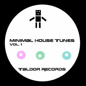 Minimal House Tunes, Vol. 1