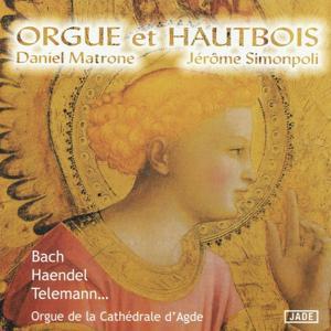 Orgue et hautbois (Orgue de la Cathédrale d'Agde)