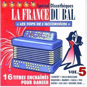 La France du bal vol.5 - Les tops de l'accordéon