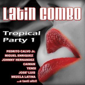 Latin Combo, Vol. 1