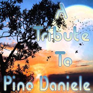 A Tribute to Pino Daniele