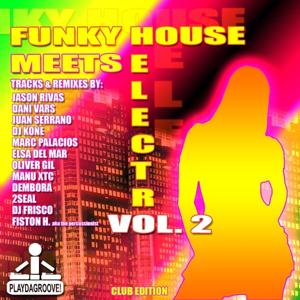 Funky House Meets Electro Vol. 2