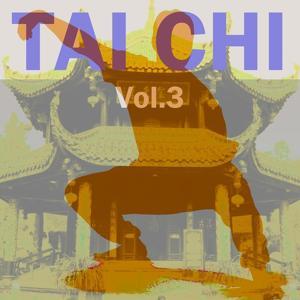 Tai Chi, Vol. 3