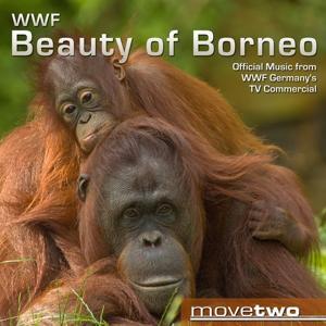 WWF Beauty of Borneo