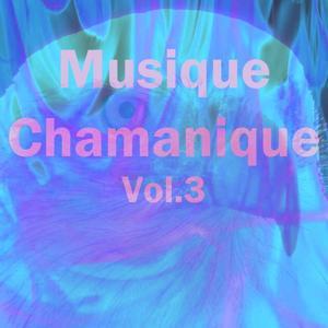Musique chamanique, vol. 3