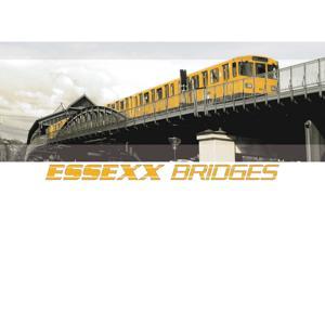 Bridges (Bonus)