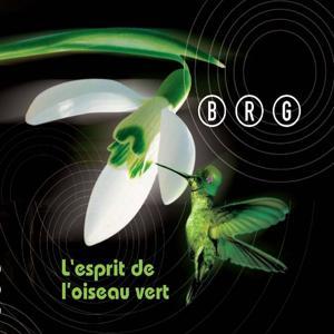L'esprit de l'oiseau vert