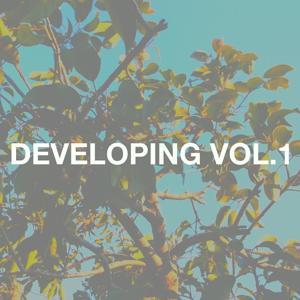 Developing Vol. 1