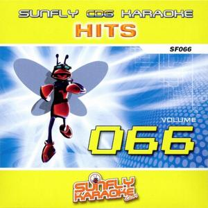 Sunfly Hits, Vol. 66