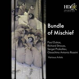 Bundle of Mischief