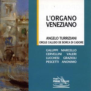 L'Organo Veneziano