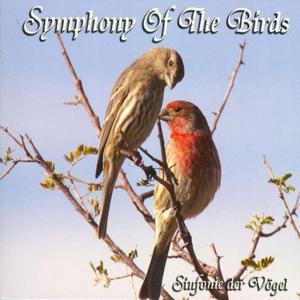 Symphony Of The Birds (Sinfonie Der Voegel)