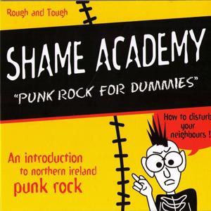 Punk Rock for Dummies
