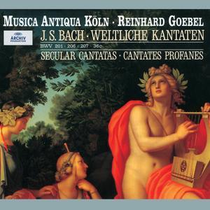 Bach: Secular Cantatas, BWV 36c, 201, 206, 207, Quodlibet BWV 524