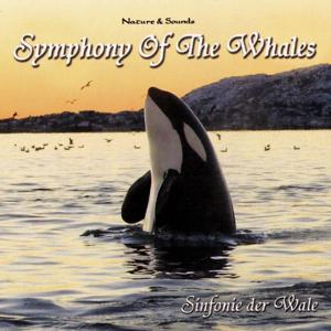 Symphony Of The Whales (Sinfonie Der Wale)