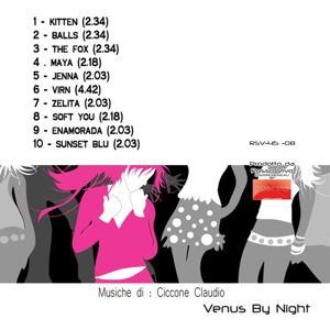 Venus By Night