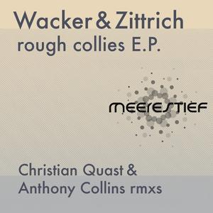 Rough Collies EP