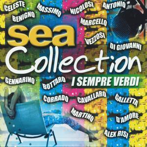 Sea collection: I sempre verdi