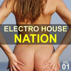 Electro House Nation Vol. 1