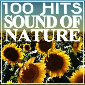 100 Hits Sound of Nature (Relaxing Music)