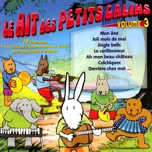 Le hit des petits câlins, vol. 3 (19 chansons et les versions instrumentales pour apprendre à chanter)