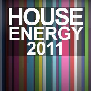 House Energy 2011