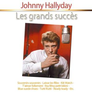 Les grands succès: Johnny Hallyday