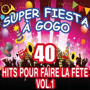 Super fiesta à gogo : 40 hits pour faire la fête, vol. 1