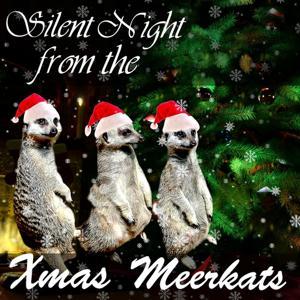 Silent Night Meerkat Christmas