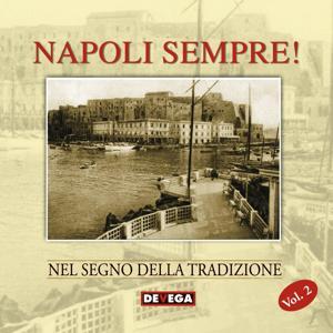 Napoli sempre!, vol. 2 (Canzone napoletana nel segno della tradizione)