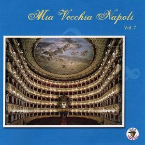 Mia vecchia Napoli, vol. 7