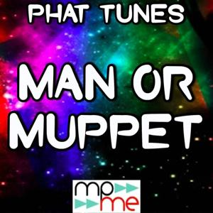 Man Or Muppet - Mixes Tribute to The Muppets