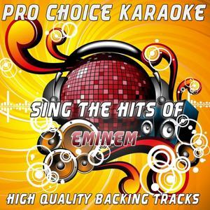 Sing the Hits of Eminem (Karaoke Version) (Originally Performed By Eminem)
