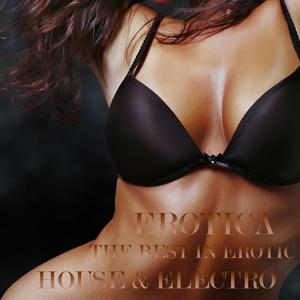 Erotica, the Best in Erotic House and Electro (An Ultimate Selection of Sexy Dance Grooves)