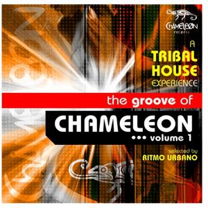 The Groove of Chameleon, Vol. 1 (A tribal House Experience, selected By Ritmo Urbano)