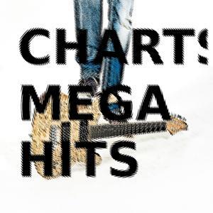 Charts Megahits & Supersongs 2012