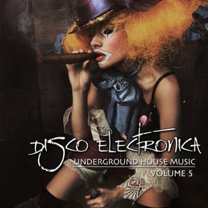 Disco Electronica (Underground House Music, Vol. 5)