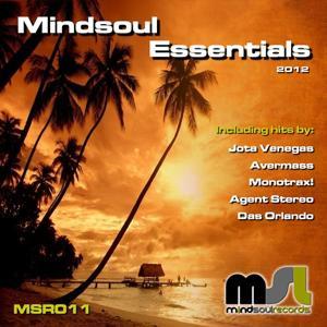 Mindsoul Essentials 2012
