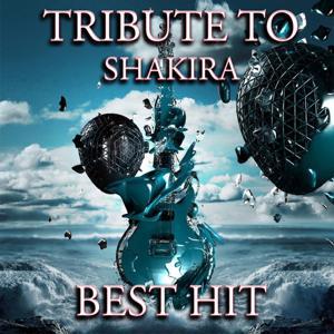 Tribute to Shakira (Best Hit 2012)