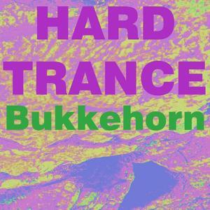 Hard trance musikk